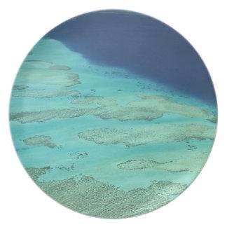 Malolo Barrier Reef off Malolo Island, Fiji 2 Plate