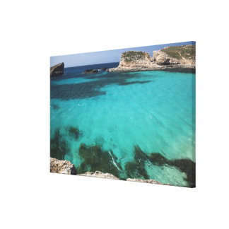 Malta, Comino Island, The Blue Lagoon Canvas Print