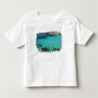 Malta, Comino Island, The Blue Lagoon Toddler T-shirt
