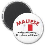Maltés apuesto imanes