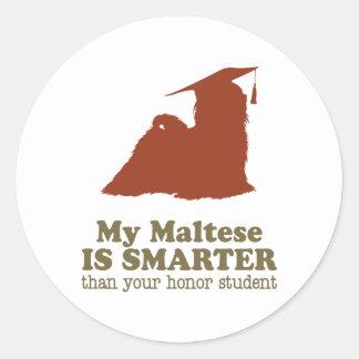 Maltés Etiqueta