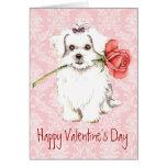 Maltés subió tarjeta del día de San Valentín