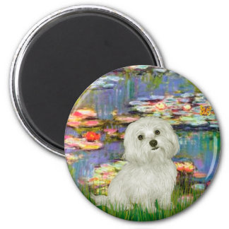Maltese 11 - Lilies 2 2 Inch Round Magnet
