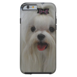 Case-Mate Barely There iPhone 6 Case with Maltese Phone Cases design