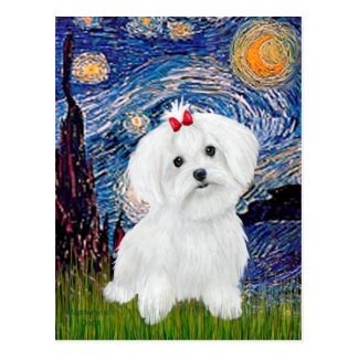 Maltese 8 pup - Starry Night Postcard