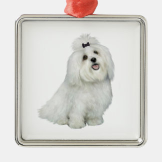 Maltese (A) - with top notch Metal Ornament