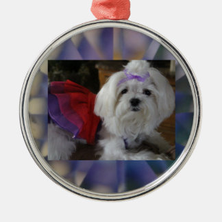 Maltese All Dressed-Up Metal Ornament