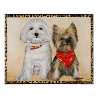 Maltese and Yorkie Pups Poster