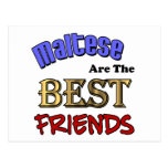 Maltese Are The Best Friends Postcards