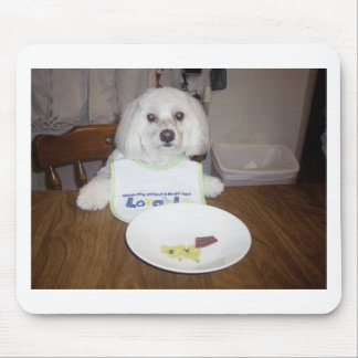 Maltese At Dinner Mouse Pad