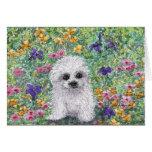 Maltese Bichon puppy in garden Greeting Card