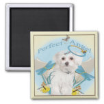 Maltese Butterfly Catcher Gifts 2 Inch Square Magnet
