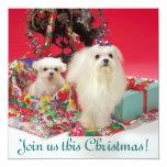 Maltese Christmas Invitations