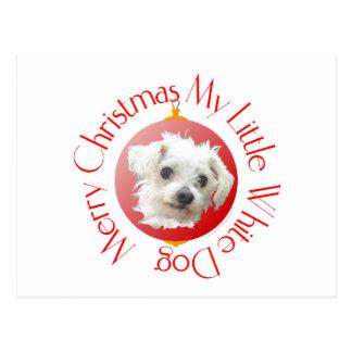Maltese Christmas Little White Dog Postcard