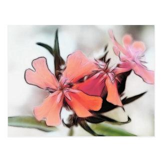 Maltese Cross Flowers Abstract Postcard