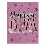 Maltese DIVA Postcard