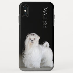 Case-Mate Barely There Apple iPhone XS Max Case with Maltese Phone Cases design