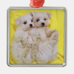 Maltese Dog; is a small breed of white dog that 2 Square Metal Christmas Ornament