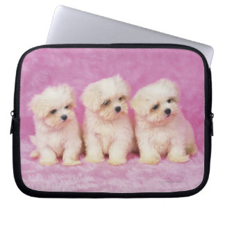 Maltese Dog; is a small breed of white dog that Laptop Sleeve