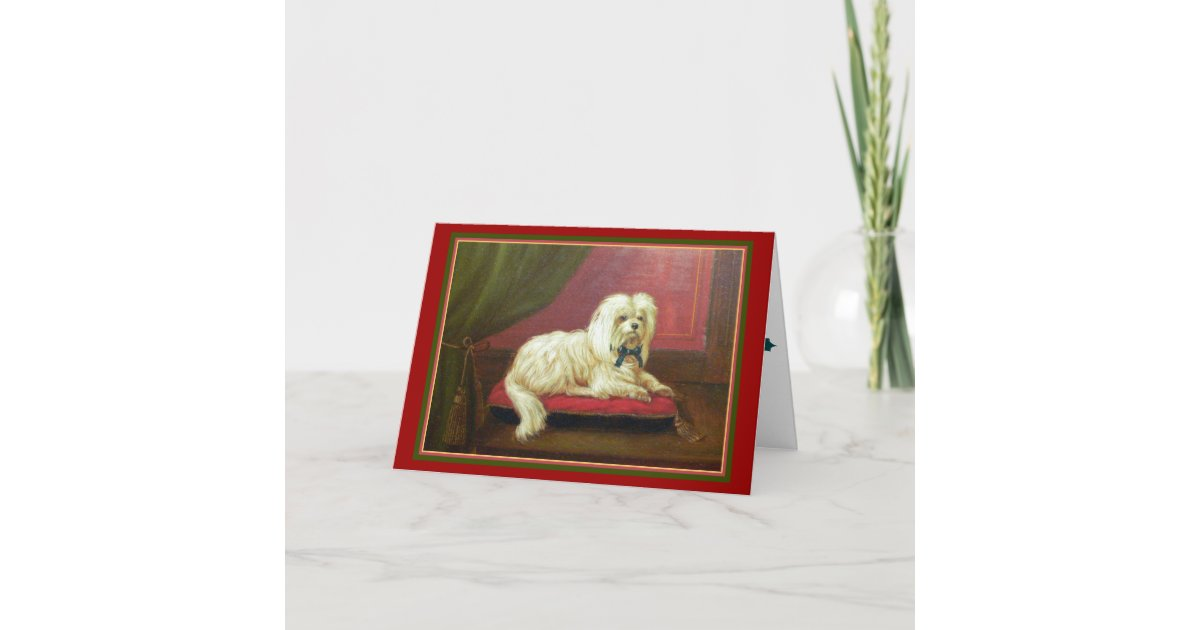 Maltese Dog Lover\'s Old Fashioned Christmas Card | Zazzle.com
