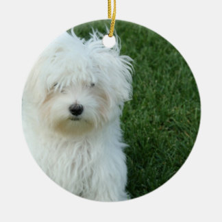Maltese Dog Ornament