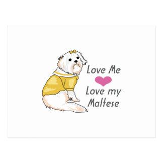MALTESE DOG POSTCARD