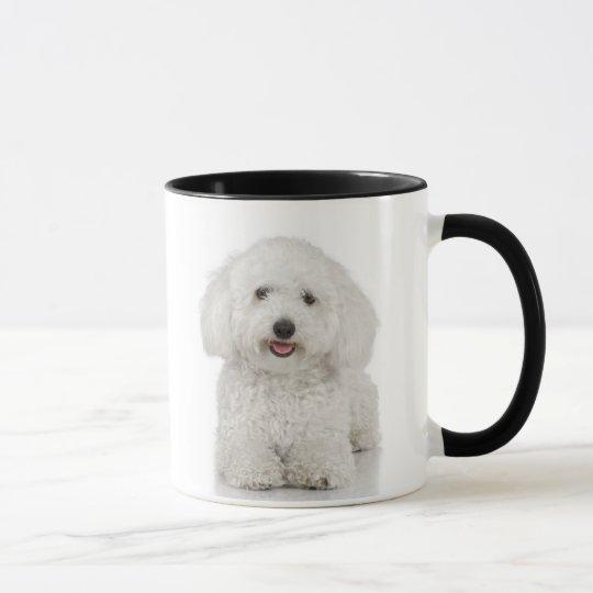 Maltese Dog White Mug