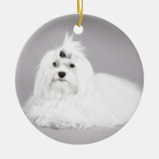 Maltese Double-Sided Ceramic Round Christmas Ornament