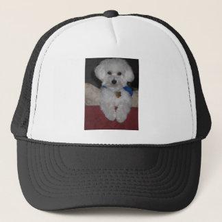 Maltese Gift Trucker Hat