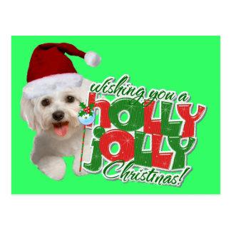 Maltese Have Holly Jolly Christmas Postcard
