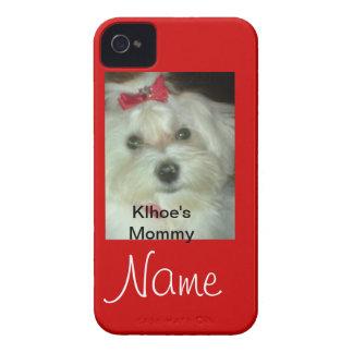 Maltese iPhone 4 Case