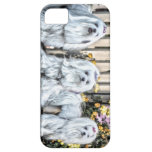 Maltese Iphone 5 cover