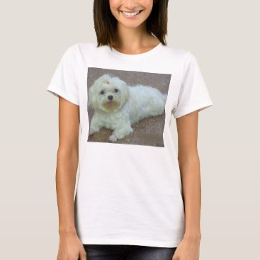 Beach Themed maltese laying T-Shirt