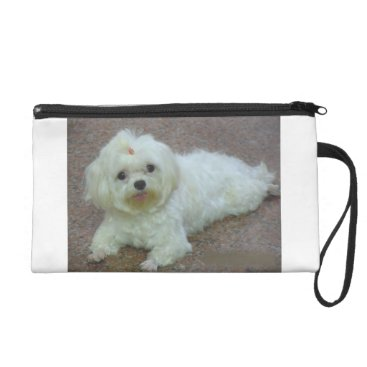 Beach Themed maltese laying wristlet purse