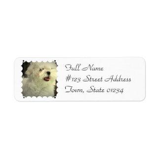 Maltese Mailing Label Return Address Label
