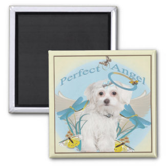 Maltese Perfect Angel Gifts 2 Inch Square Magnet