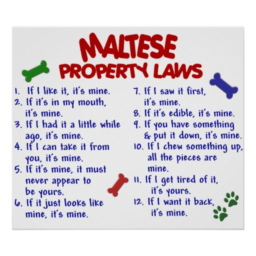 MALTESE PL2 POSTER