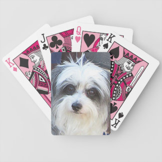 Maltese-Poodle Playing Cards