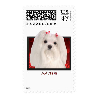 Maltese Postage Stamp