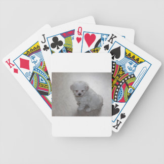 maltese pup bicycle playing cards