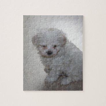 Beach Themed maltese pup jigsaw puzzle