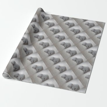 Beach Themed maltese pup wrapping paper