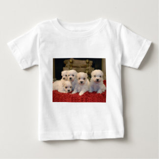 Maltese Puppies for Puppy Lovers Everywhere Baby T-Shirt