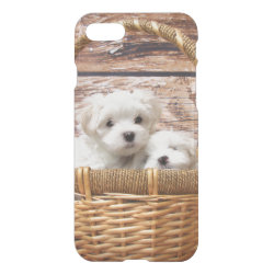 Uncommon iPhone 7 Clearly™ Deflector Case with Maltese Phone Cases design