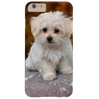 Maltese Puppy...Adorable Barely There iPhone 6 Plus Case