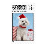 Maltese Puppy Christmas Postage