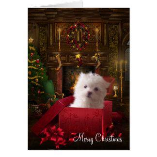 Maltese Puppy Dog Christmas Greeting Card