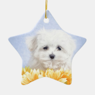 Maltese puppy Double-Sided star ceramic christmas ornament