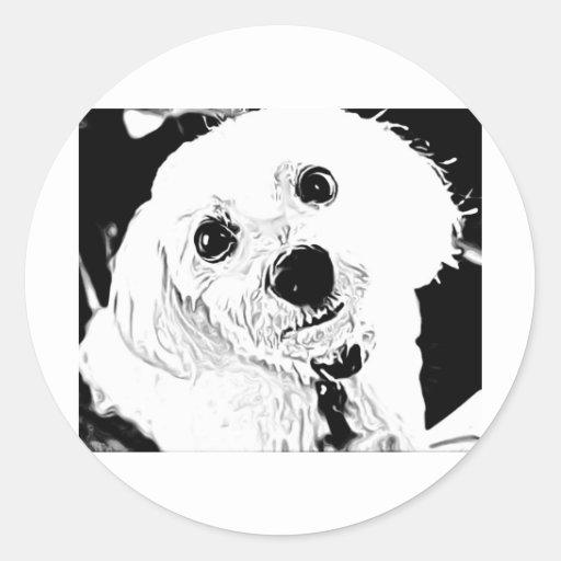 maltese puppy face sticker