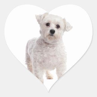 Maltese Puppy Heart Sticker